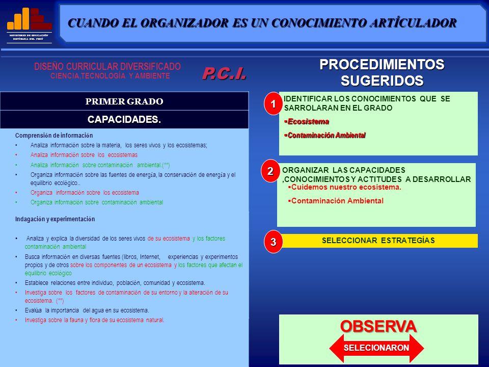 MINISTERIO DE EDUCACIÓN REPÚBLICA DEL PERÚ CUIDEMOS NUESTRO ECOSISTEMA P.C.I.