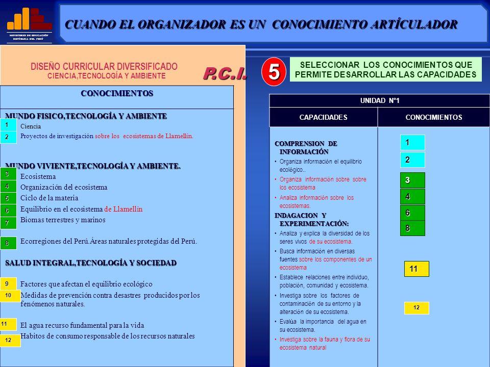 MINISTERIO DE EDUCACIÓN REPÚBLICA DEL PERÚ UNIDAD DIDACTICA CAPACIDADESCONOCIMIENTOS PERIODOS IIIIIIIV UNIDAD DE APRENDIZAJE Nro.