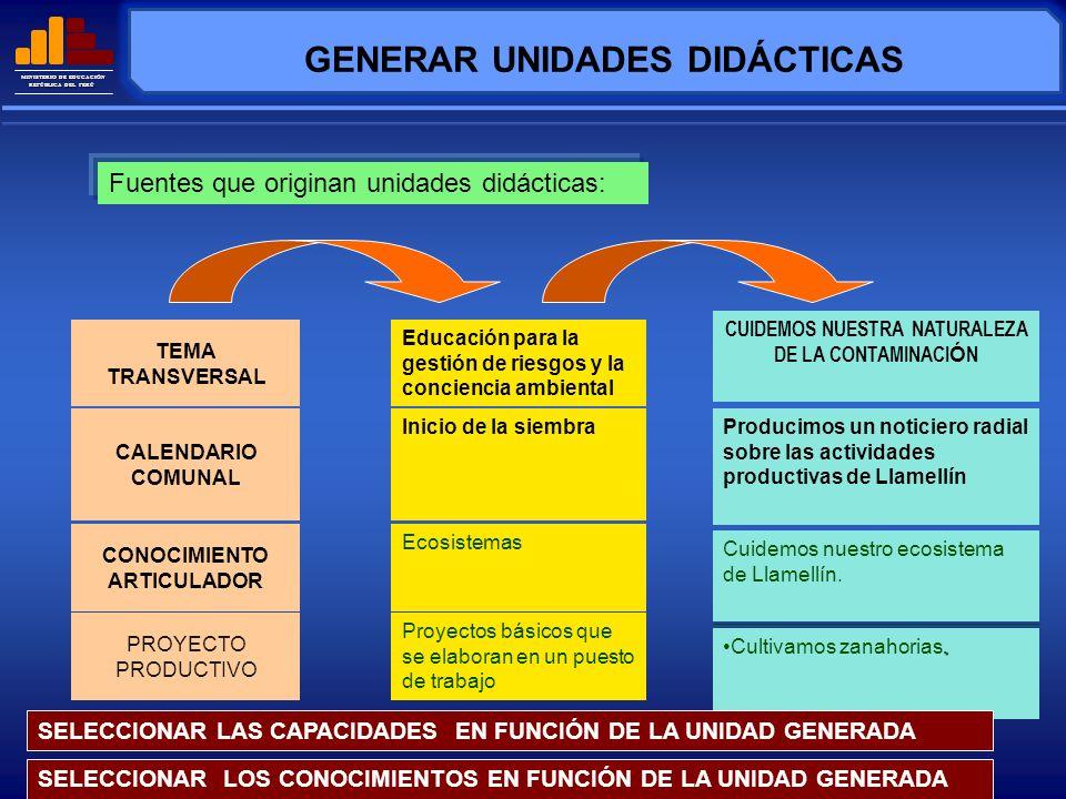 MINISTERIO DE EDUCACIÓN REPÚBLICA DEL PERÚ GENERAR UNIDADES DIDÁCTICAS: EJEMPLOS 1Ecosistema 2 Contaminaci ó n Ambiental Contaminaci ó n Ambiental CUIDEMOS NUESTRO ECOSISTEMA CUIDEMOS NUESTRA NATURALEZA DE LA CONTAMINACIÓN ¿Qué unidades podría diseñar si el organizador es un conocimiento articulado?