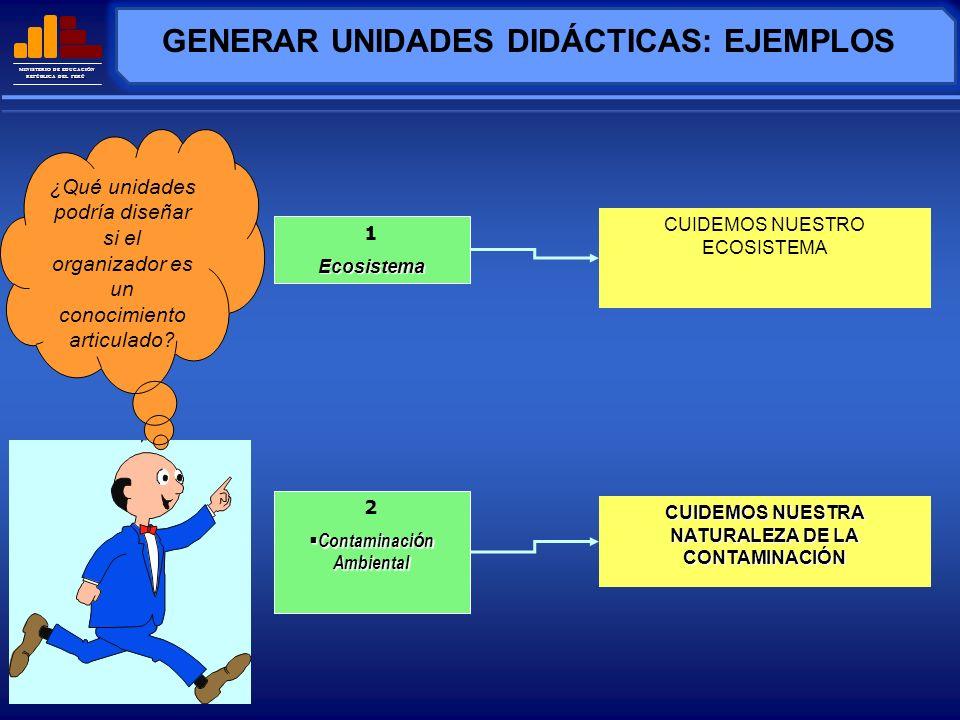 MINISTERIO DE EDUCACIÓN REPÚBLICA DEL PERÚ PROGRAMA CURRICULAR DIVERSIFICADO DE C.T.A.