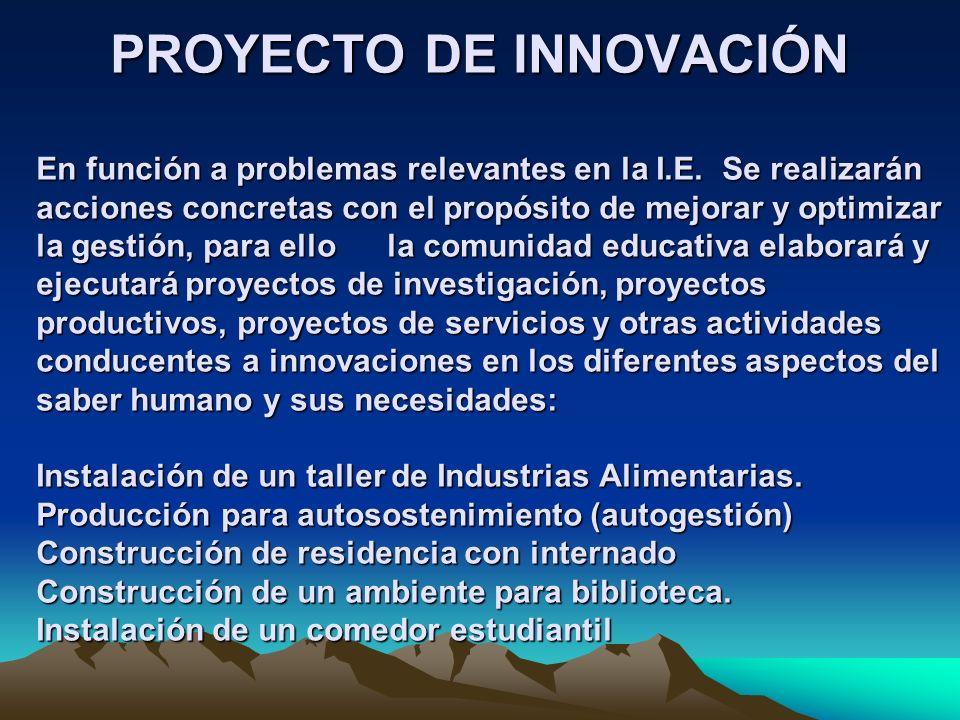 PROYECTO DE INNOVACIÓN En función a problemas relevantes en la I.E. Se realizarán acciones concretas con el propósito de mejorar y optimizar la gestió
