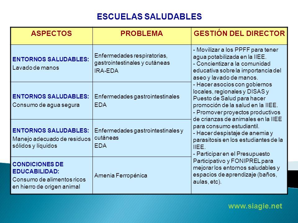 ASPECTOSPROBLEMAGESTIÓN DEL DIRECTOR ENTORNOS SALUDABLES: Lavado de manos Enfermedades respiratorias, gastrointestinales y cutáneas IRA-EDA - Moviliza
