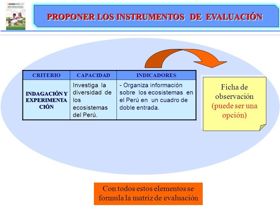 PROPONER LOS INSTRUMENTOS DE EVALUACIÓN CRITERIOCAPACIDADINDICADORES INDAGACIÓN Y EXPERIMENTA CIÓN Investiga la diversidad de los ecosistemas del Perú.
