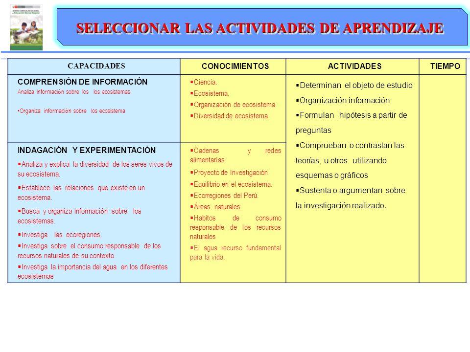 ORGANIZACIÓN DE LA UNIDAD DIDÁCTICA SELECCIONAR LAS ACTIVIDADES DE APRENDIZAJE CAPACIDADES CONOCIMIENTOSACTIVIDADESTIEMPO COMPRENSIÓN DE INFORMACIÓN A