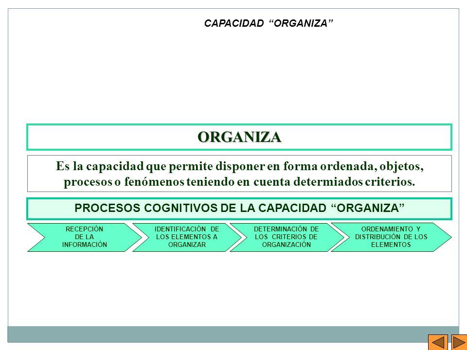 ORGANIZA Es la capacidad que permite disponer en forma ordenada, objetos, procesos o fenómenos teniendo en cuenta determiados criterios. CAPACIDAD ORG