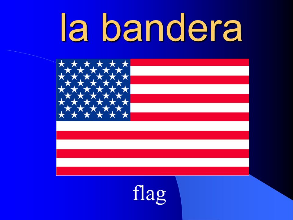la bandera flag