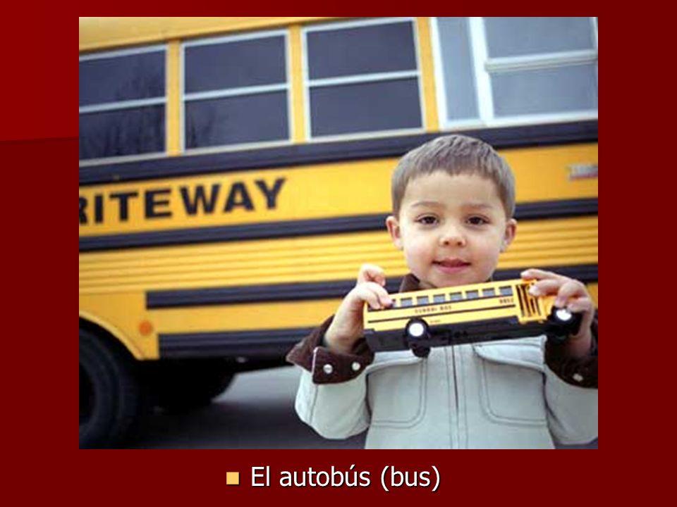 El autobús (bus) El autobús (bus)