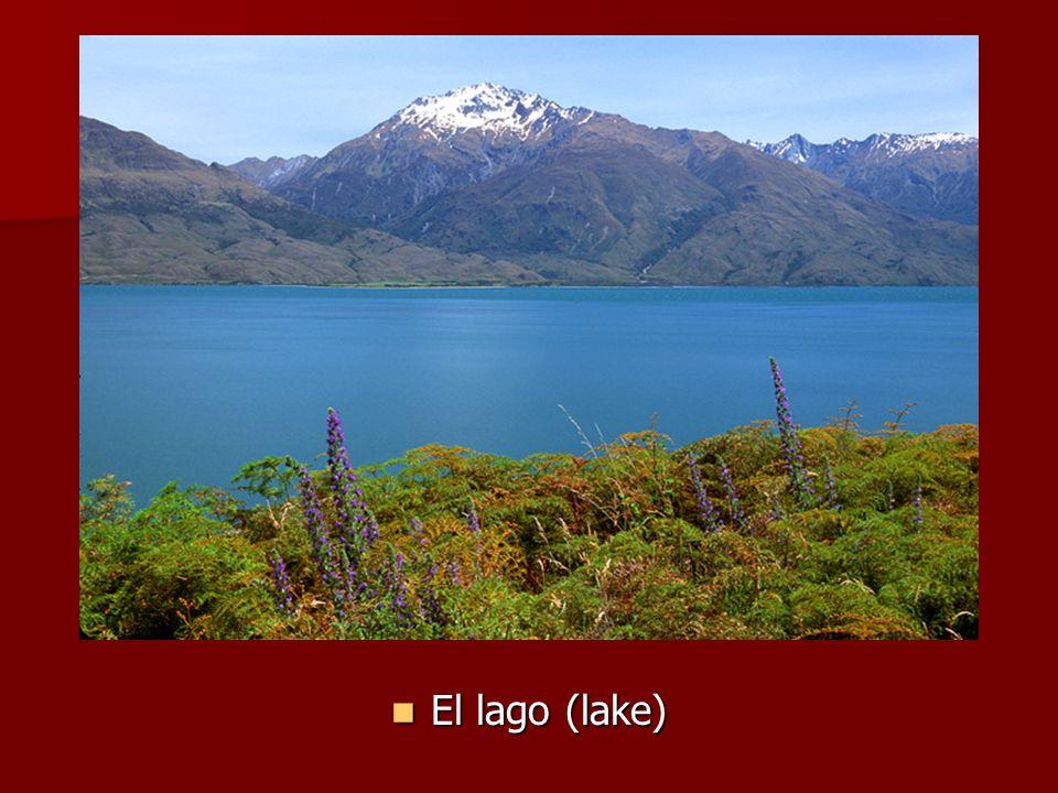 El lago (lake) El lago (lake)