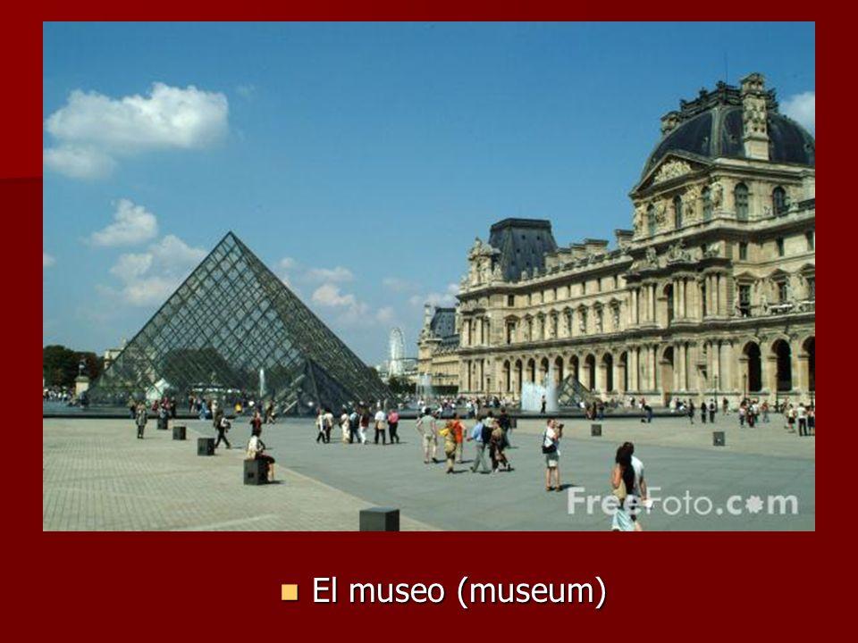 El museo (museum) El museo (museum)