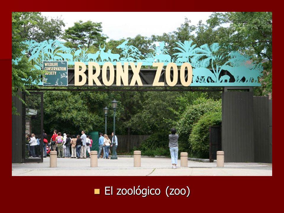 El zoológico (zoo) El zoológico (zoo)