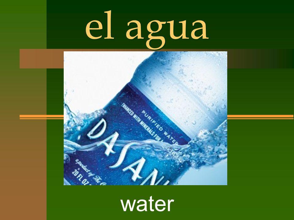el agua water