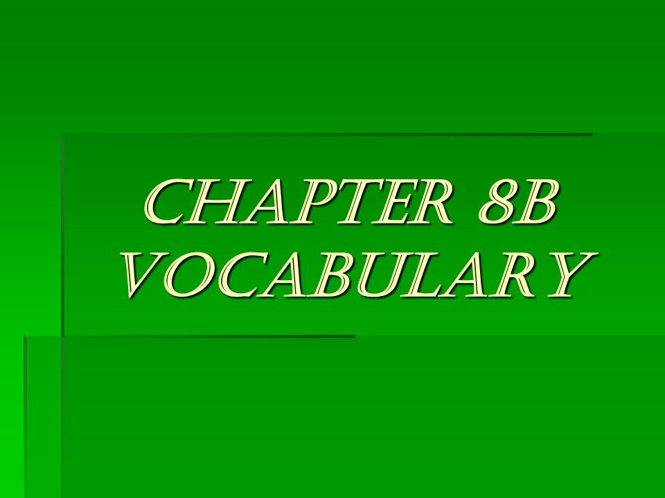 CHAPTER 8B VOCABULARY