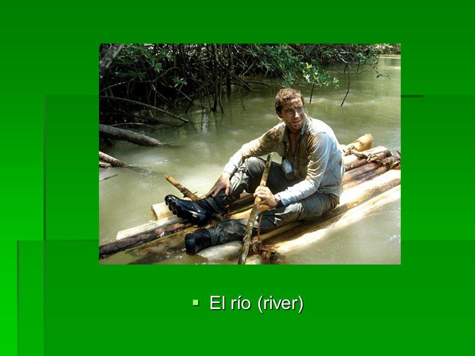 El río (river) El río (river)