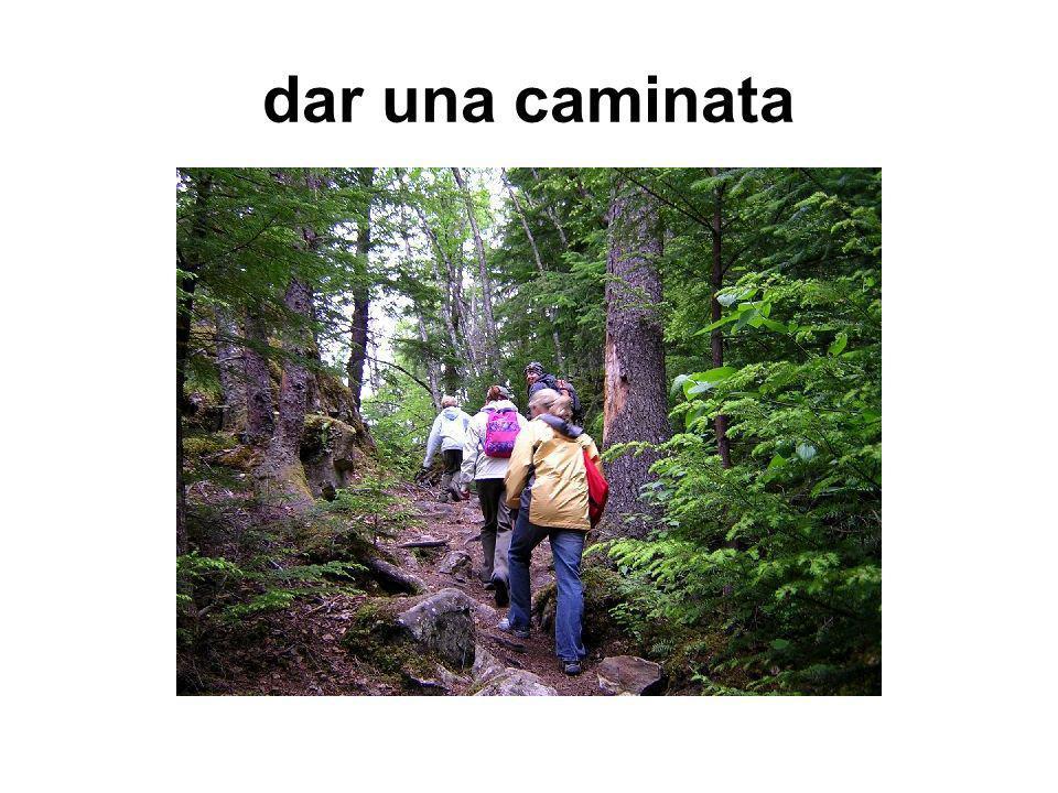 dar una caminata