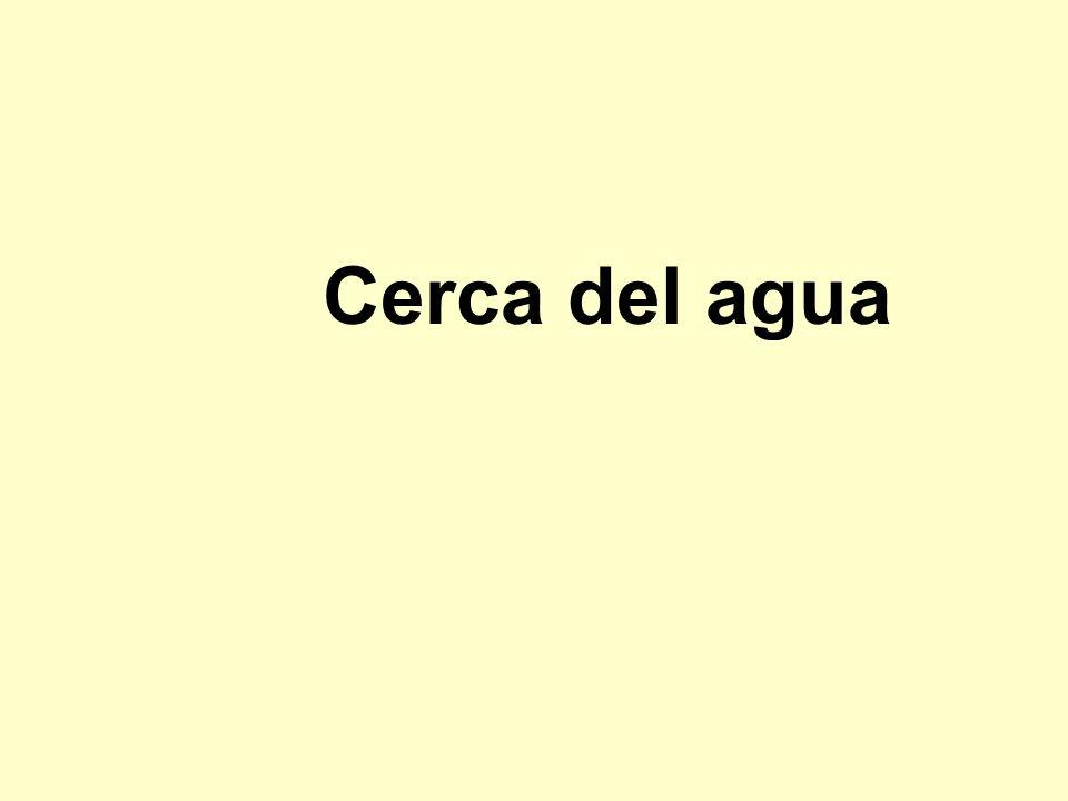 Cerca del agua