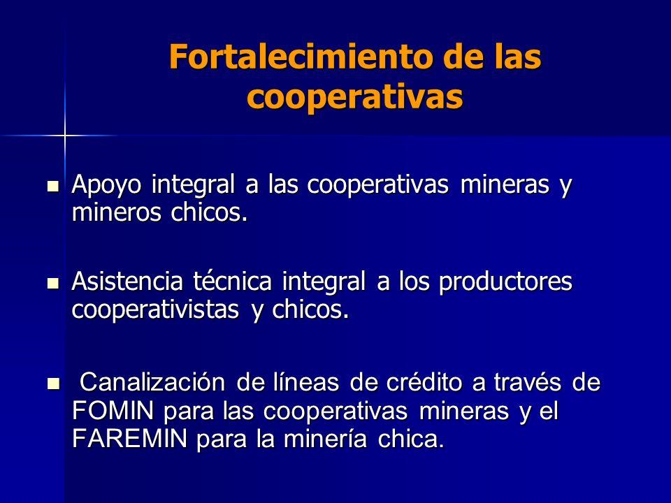 Fortalecimiento de las cooperativas Apoyo integral a las cooperativas mineras y mineros chicos. Apoyo integral a las cooperativas mineras y mineros ch