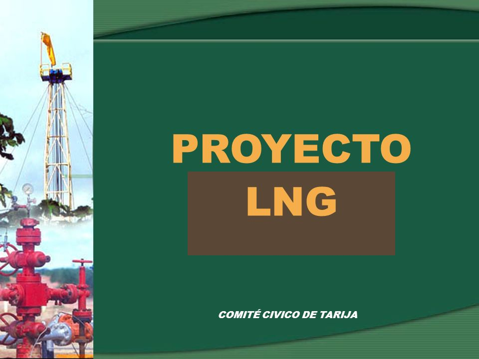 COMITÉ CIVICO DE TARIJA PROYECTO LNG