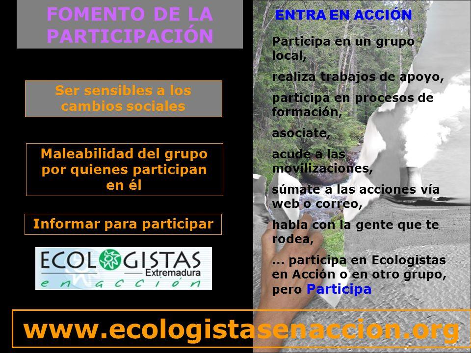 INTERNACIONAL Presencia en el BEE Participación en la Comisión Ejecutiva Búsqueda de alianzas dentro del ecologismo social Apoyo a distintas campañas Seguimiento de Quejas comunitarias Participación en Cumbres mundiales Pensar Globalmente Actuar localmente