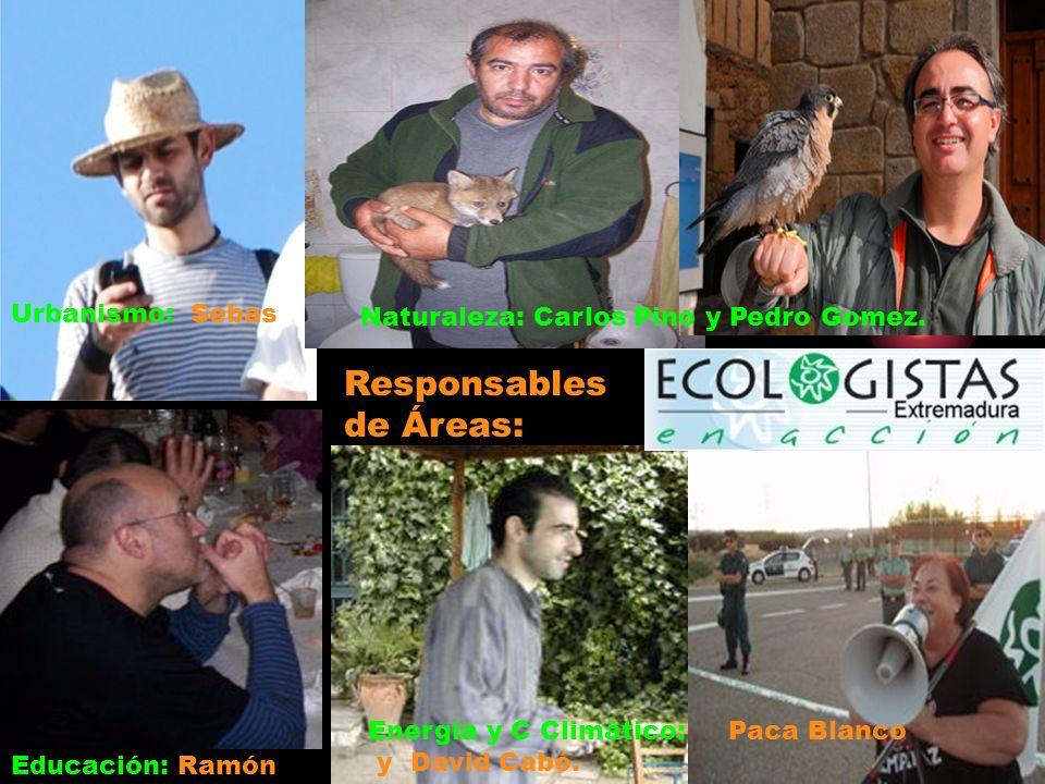 Urbanismo: Sebas Responsables de Áreas: Educación: Ramón Naturaleza: Carlos Pino y Pedro Gomez.