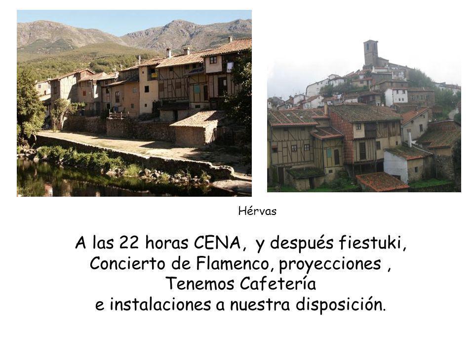 A las 22 horas CENA, y después fiestuki, Concierto de Flamenco, proyecciones, Tenemos Cafetería e instalaciones a nuestra disposición.