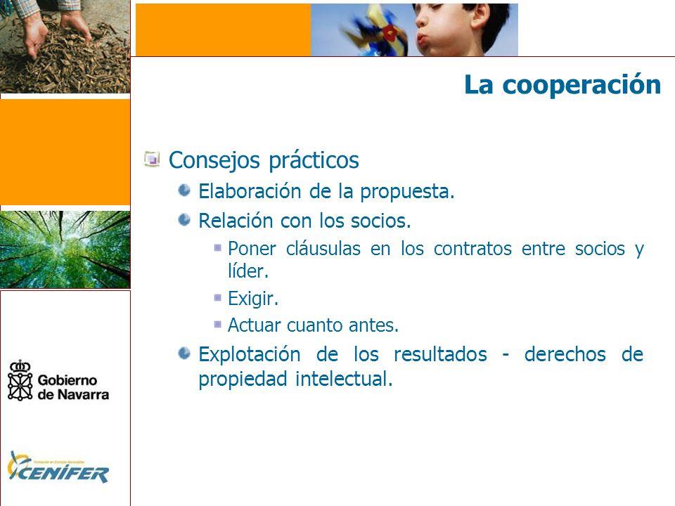 La cooperación Consejos prácticos Elaboración de la propuesta. Relación con los socios. Poner cláusulas en los contratos entre socios y líder. Exigir.