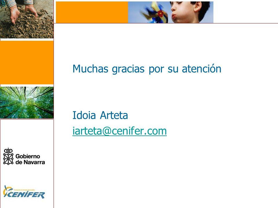 Muchas gracias por su atención Idoia Arteta iarteta@cenifer.com