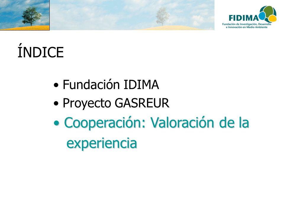 ÍNDICE Fundación IDIMA Proyecto GASREUR Cooperación: Valoración de la Cooperación: Valoración de la experiencia experiencia