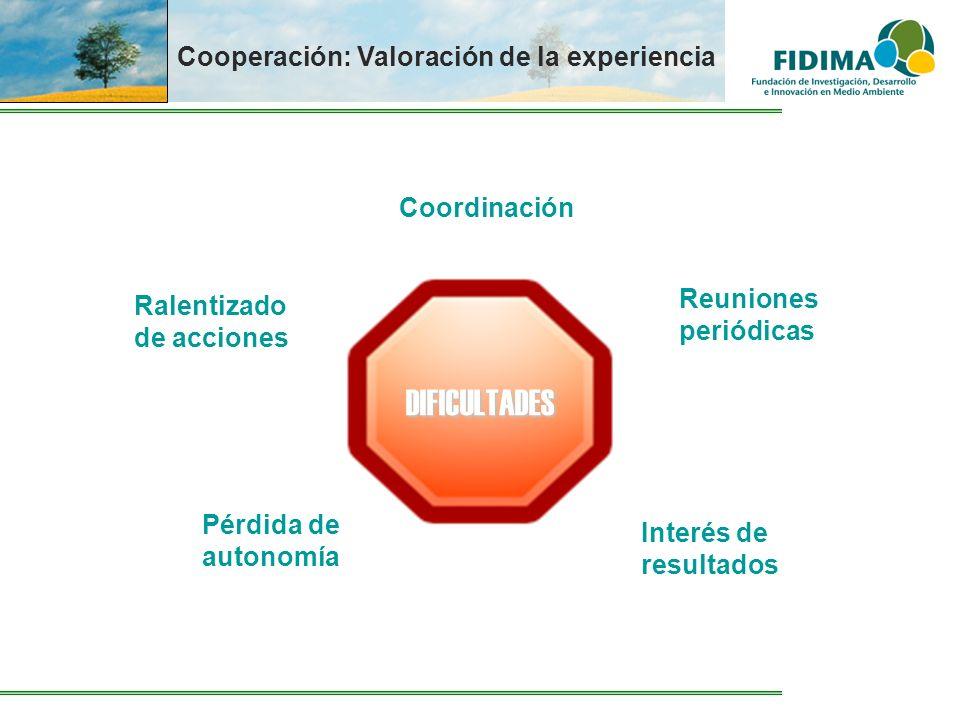 Cooperación: Valoración de la experiencia DIFICULTADES Coordinación Reuniones periódicas Interés de resultados Pérdida de autonomía Ralentizado de acc