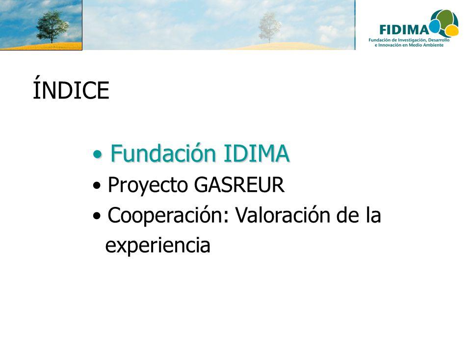 Fundación IDIMA Fundación IDIMA Proyecto GASREUR Cooperación: Valoración de la experiencia ÍNDICE