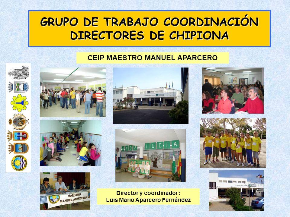 GRUPO DE TRABAJO COORDINACIÓN DIRECTORES DE CHIPIONA CEIP LOS ARGONAUTAS Director : Manuel Valdés Montalbán