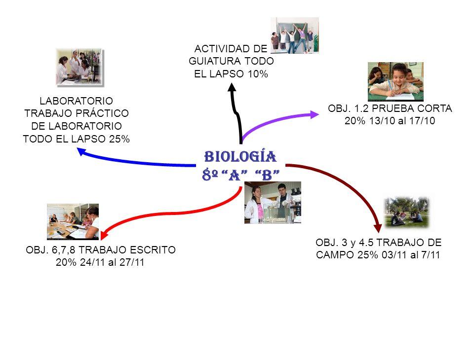 BIOLOGÍA 8º A B OBJ. 1.2 PRUEBA CORTA 20% 13/10 al 17/10 OBJ. 3 y 4.5 TRABAJO DE CAMPO 25% 03/11 al 7/11 OBJ. 6,7,8 TRABAJO ESCRITO 20% 24/11 al 27/11