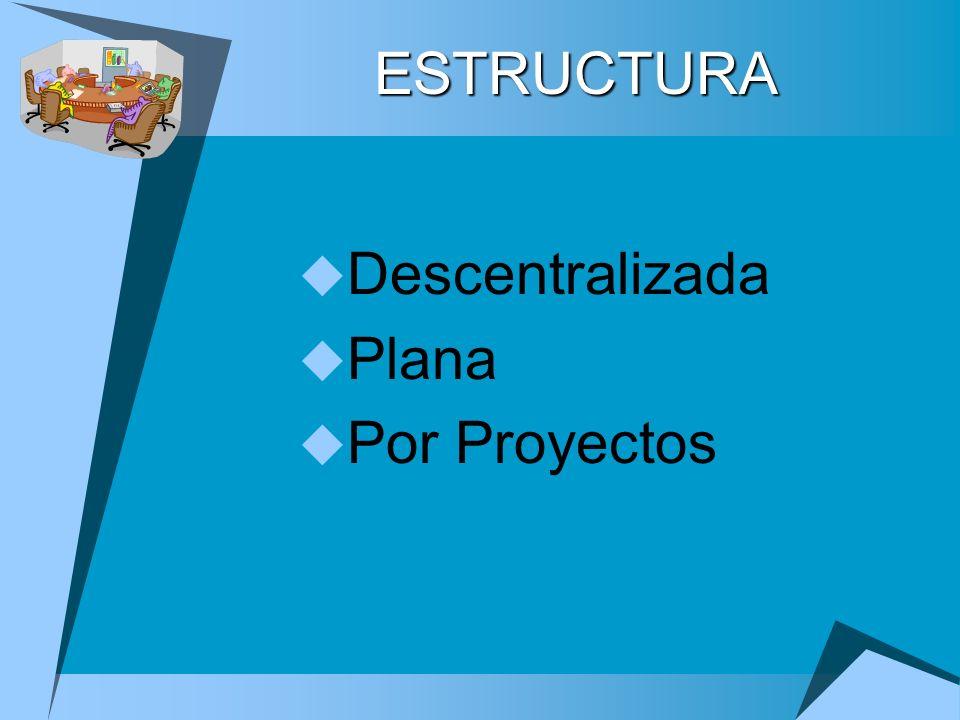 Descentralizada Plana Por Proyectos ESTRUCTURA