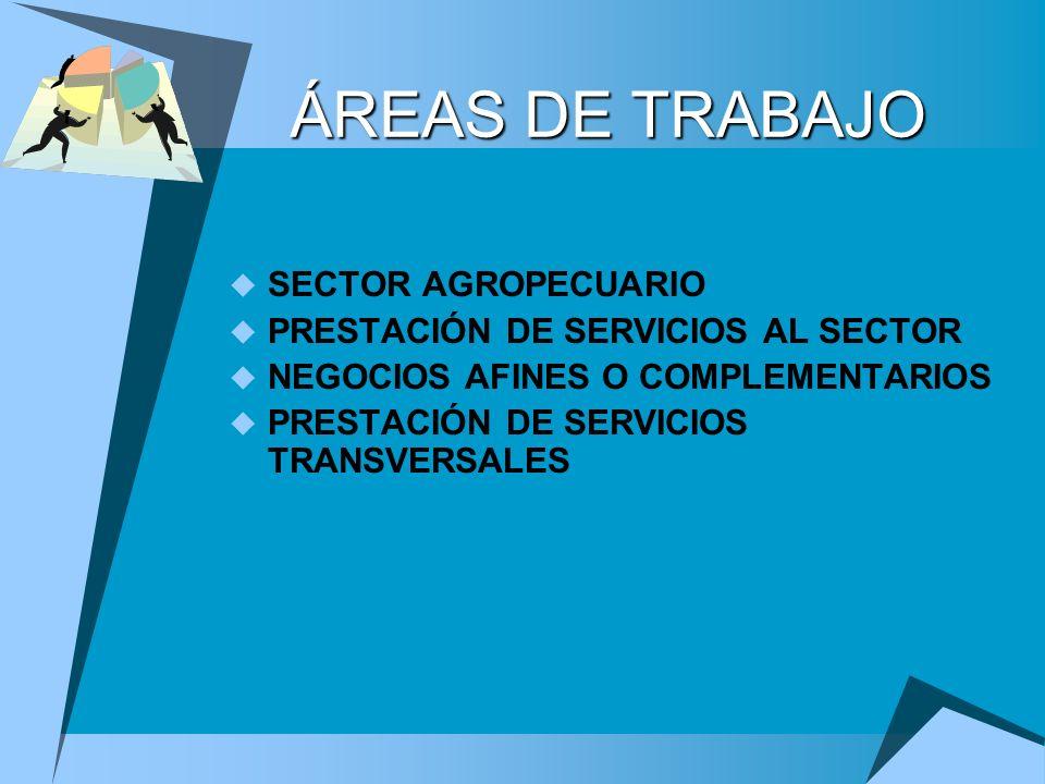 ÁREAS DE TRABAJO SECTOR AGROPECUARIO PRESTACIÓN DE SERVICIOS AL SECTOR NEGOCIOS AFINES O COMPLEMENTARIOS PRESTACIÓN DE SERVICIOS TRANSVERSALES