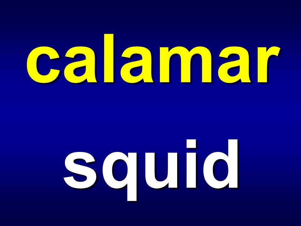 bacalao codfish