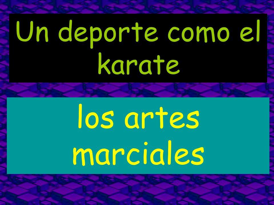 Un deporte como el karate los artes marciales