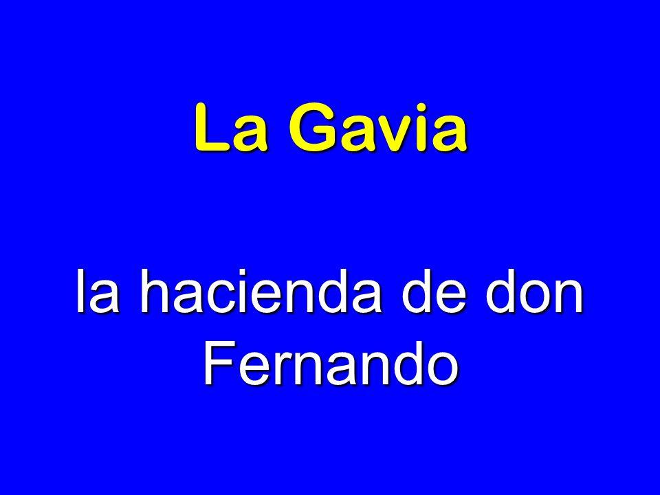 La Gavia la hacienda de don Fernando