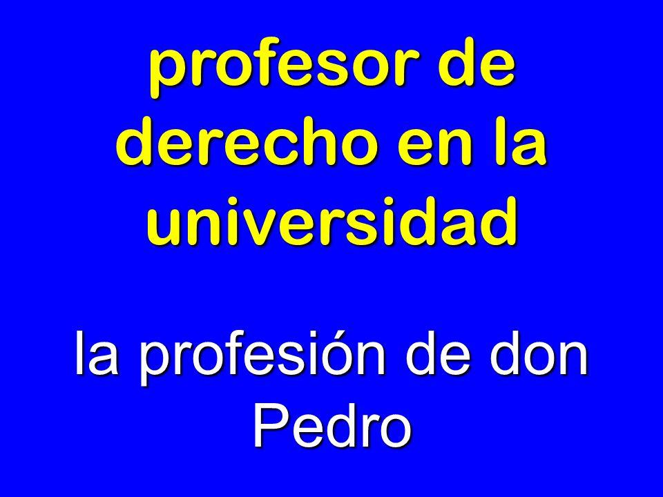 profesor de derecho en la universidad la profesión de don Pedro
