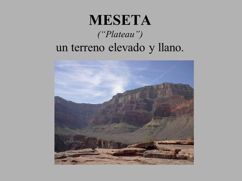 MESETA (Plateau) un terreno elevado y llano.