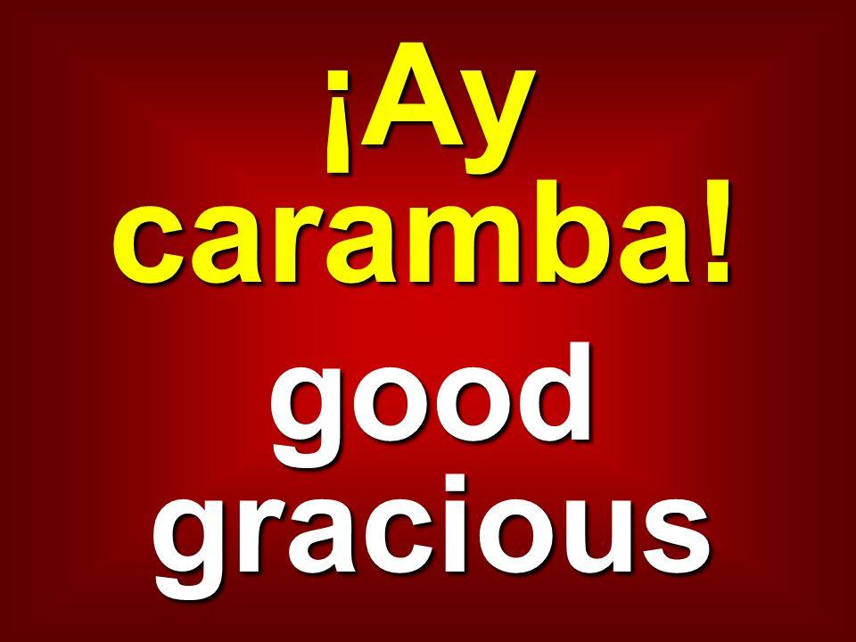 ¡Ay caramba! good gracious
