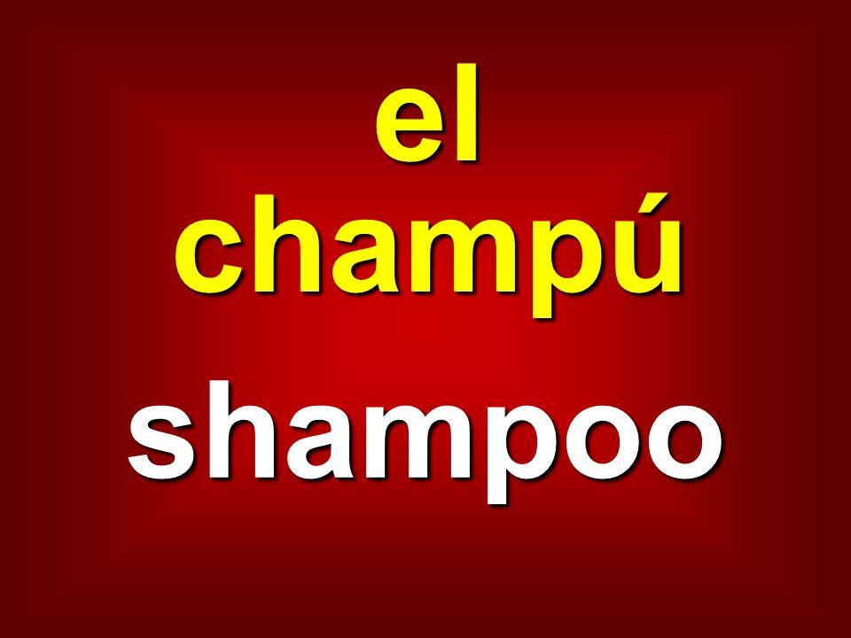 el champú shampoo