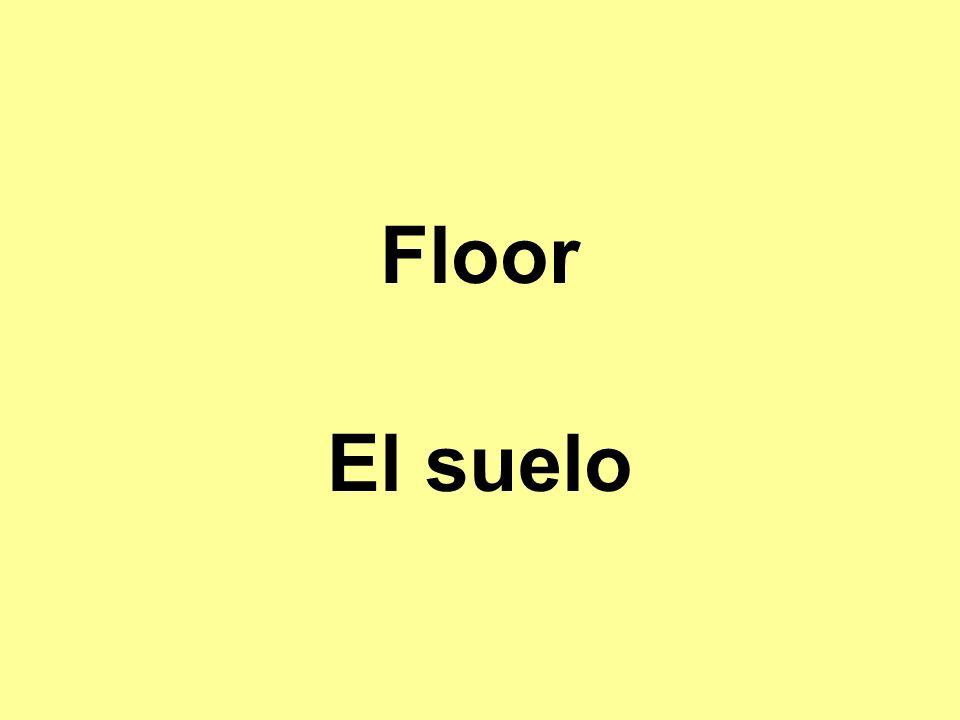Floor El suelo