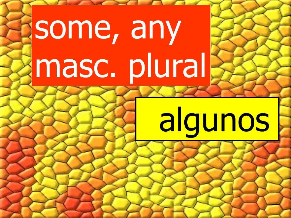 Some, any + fem.noun, singular and plural alguna algunas