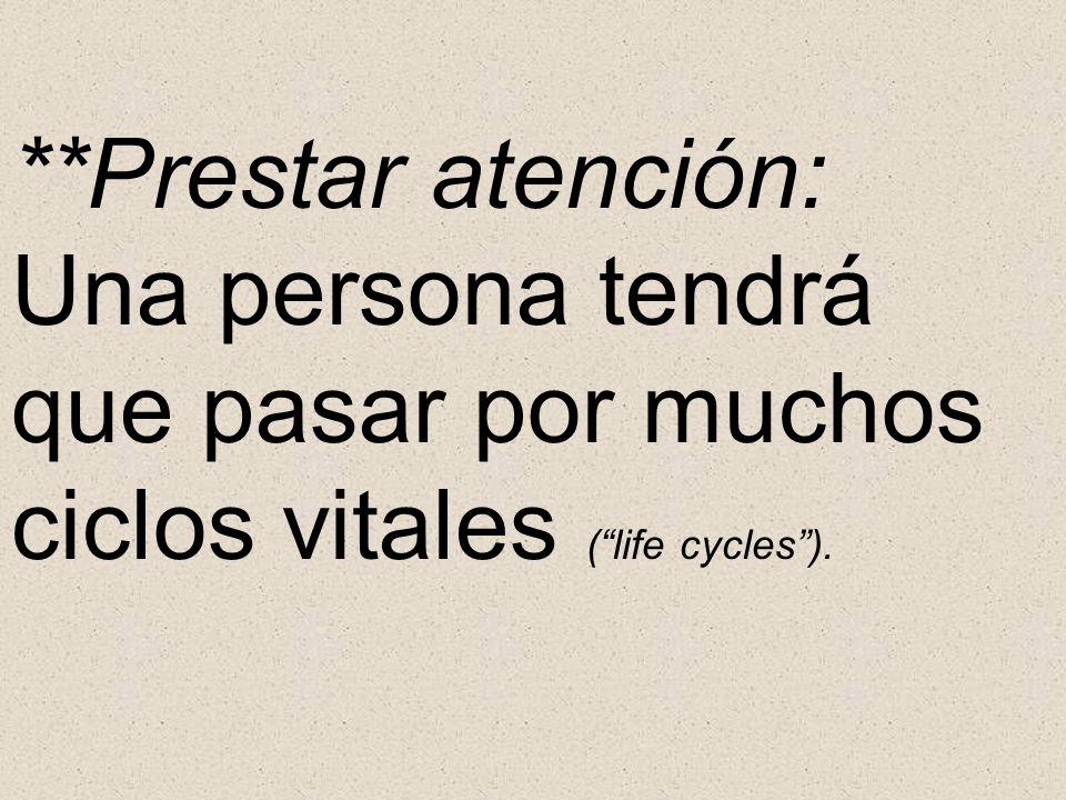 **Prestar atención: Una persona tendrá que pasar por muchos ciclos vitales (life cycles).