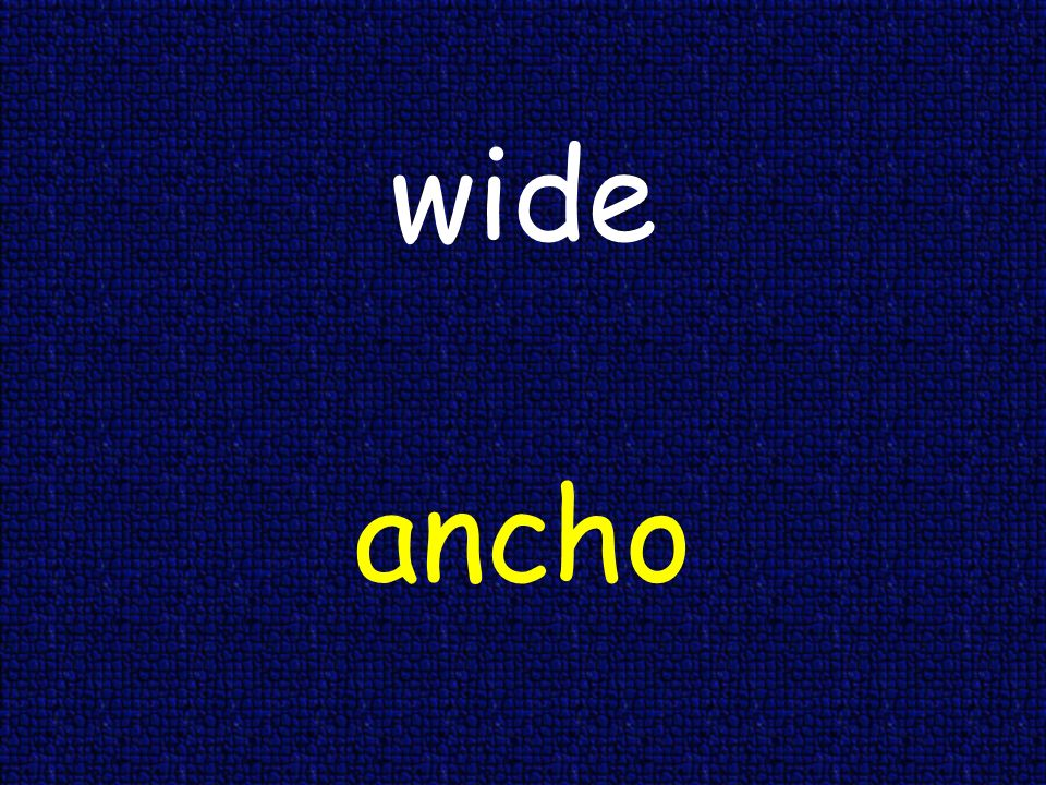 wide ancho
