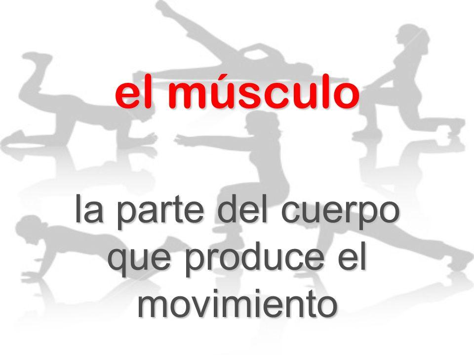 el músculo la parte del cuerpo que produce el movimiento