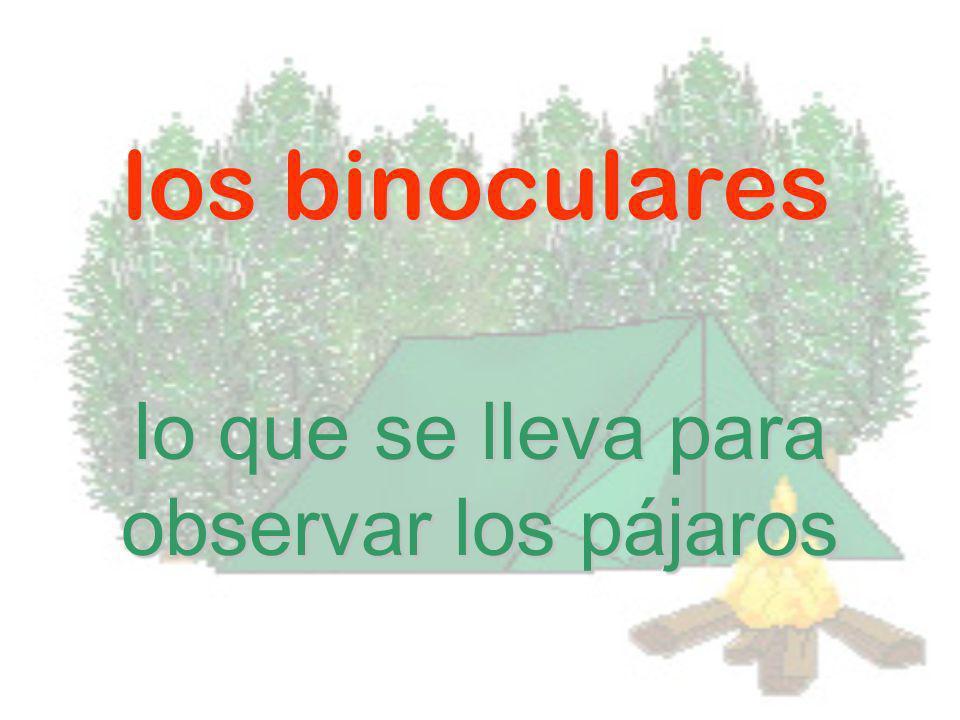 los binoculares lo que se lleva para observar los pájaros