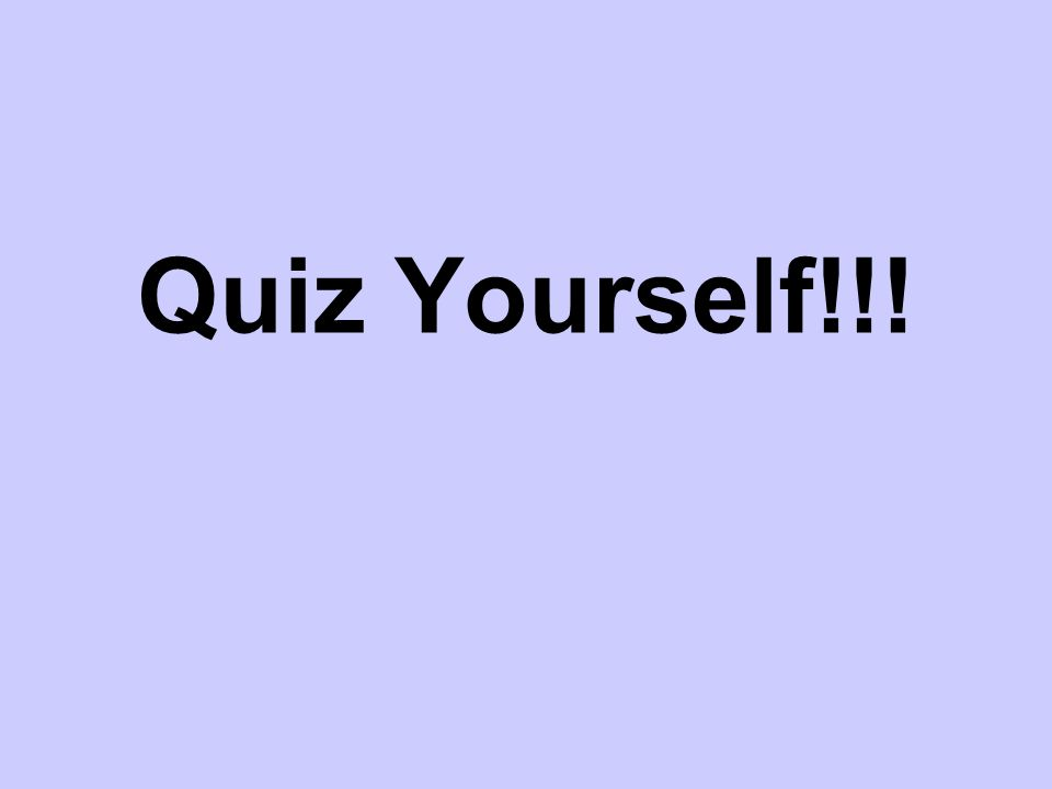 Quiz Yourself!!!