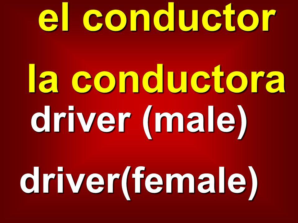 el conductor la conductora driver (male) driver(female)