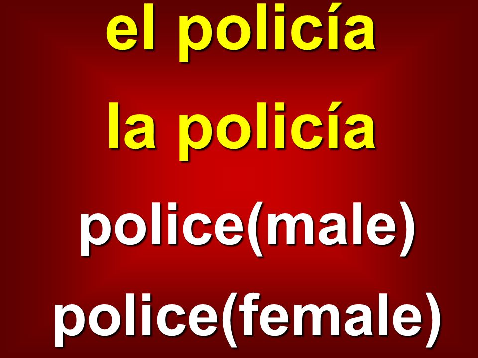 el policía la policía police(male)police(female)