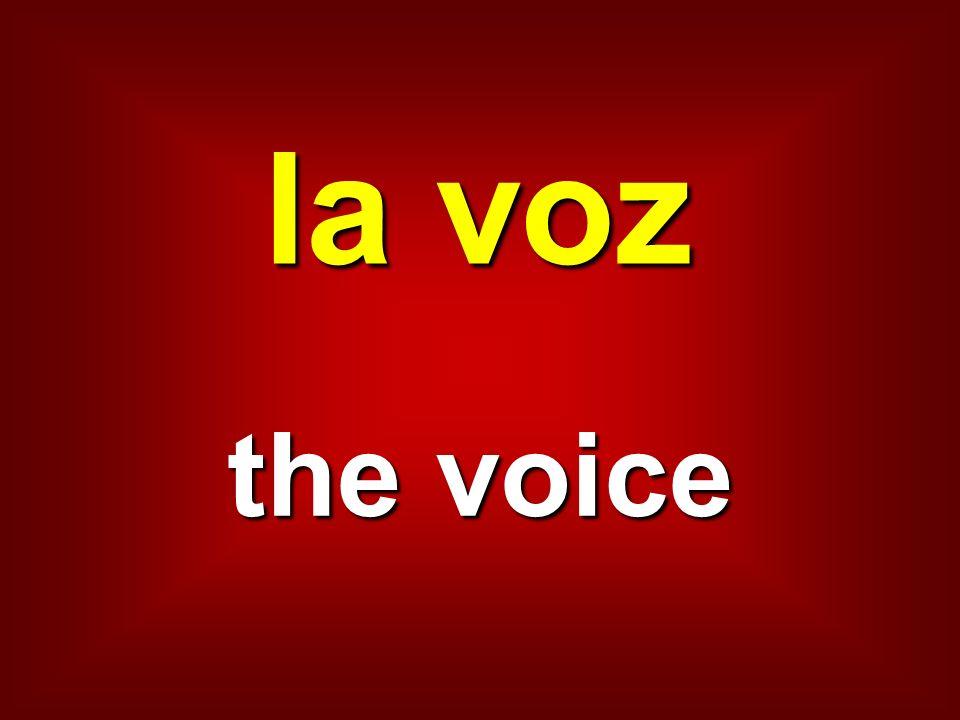 la voz the voice
